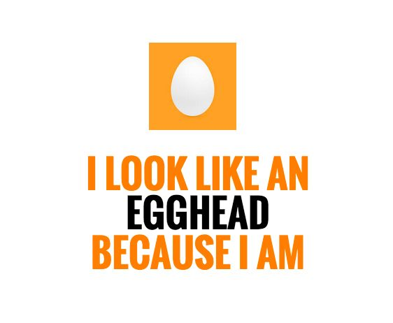 On Twitter: Feel Free to Blow Off the Eggheads and Birdbrains   Social Media Today