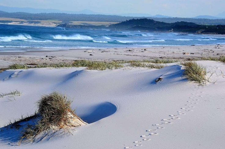 """""""Bay of Fires"""" a winning entry in our Trip to Remember competition"""