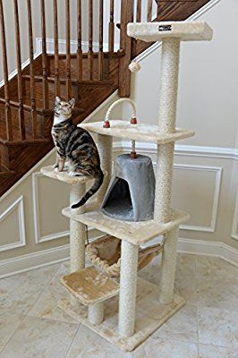 Amazon.com : Armarkat Cat Tree Model A6501, Beige : Cat Trees Cheap : Pet Supplies