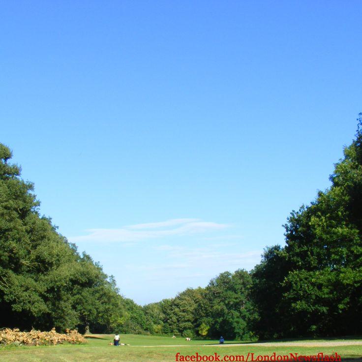 Hampstead Heath #eurotrip #unitedkingdom #greatbritain #england #london #travel #park #Hampstead #nature #Hampsteadheath #londres #londra #londonlife #igers #igerslondon #igers_uk #reise #reiseblog #instago #voyage #viaje #instalondon #instanature #instatravel #lovenature #instapassport #travelgram #sky #blue #traveling #parklife #amazing #webstagram #photooftheday #picoftheday #londontrip #instagood #instadaily #parque facebook.com/LondonNewsflash