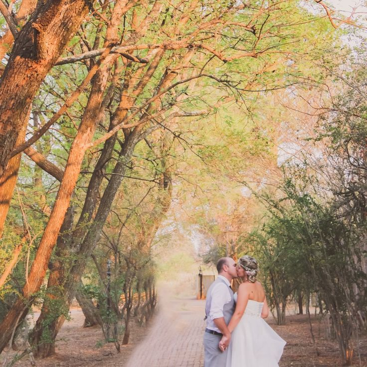 Riaan & Carien Coetzee wedding 9 Oct 2015 at Die Akker Photographer Daniel L Meyer by L'Afrique Photography