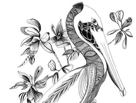 "Digital Print of Original Black Ink Drawing. 12"" x 18"" on 100lb Cardstock. Titled ""The Pelican""."