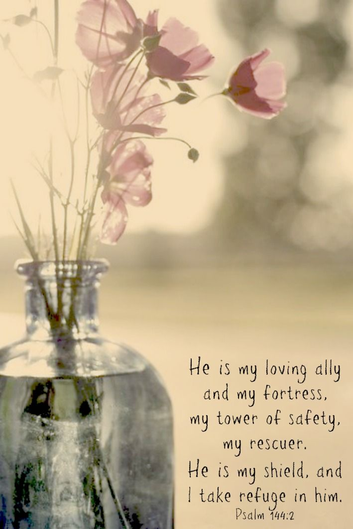 He is my loving ally and my fortress, my tower of safety, my rescuer. He is my shield and I take refuge in him - Psalm 144:2