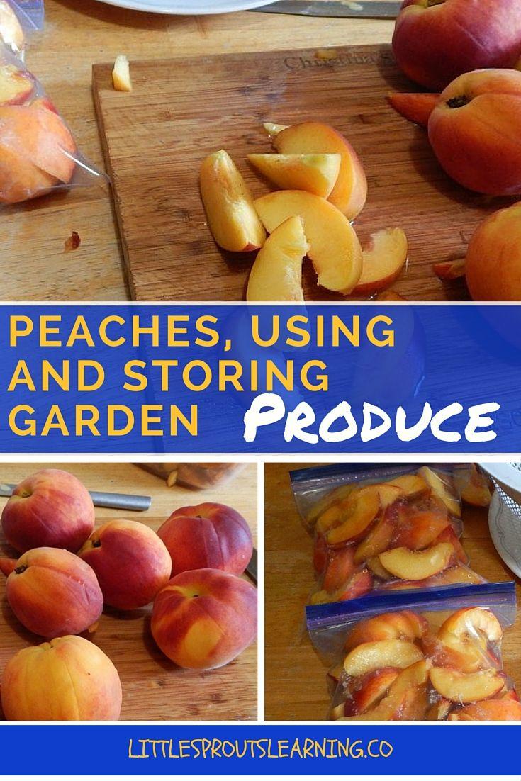 Bulk Natural Foods Peaches