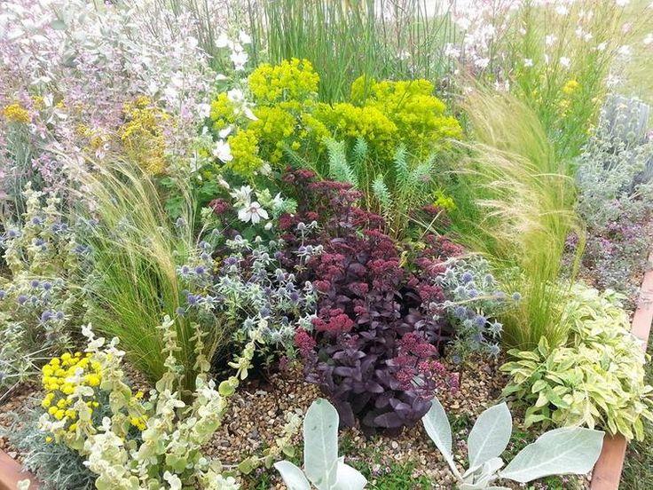 Plantas de Beth Chatto