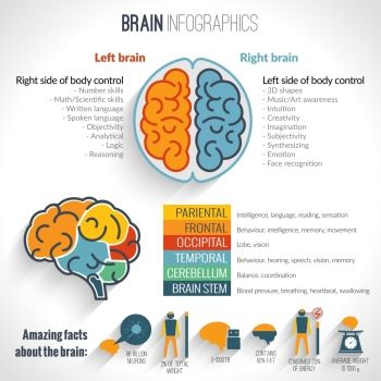 ING Brain structure left analytical and right creative hemispheres infographics set vector illustration