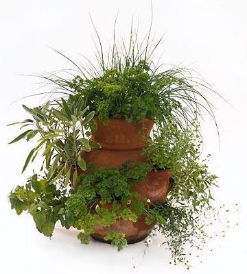 A strawberry jar is perfect for herbs! More container gardens:   http://www.midwestliving.com/garden/container/vegetable-container-garden/