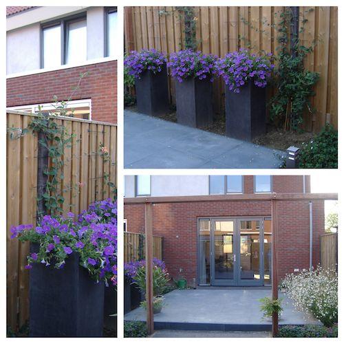 Tuinontwerp kleine tuin: Centraal Terras! En lounge hoekje!