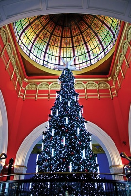 The most amazing tree ever! 144,000 Swarovski crystals and 60,000 lights! QVB Sydney