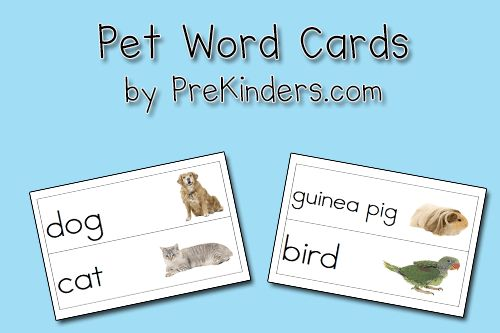 pet word cards @ PreKinders.com