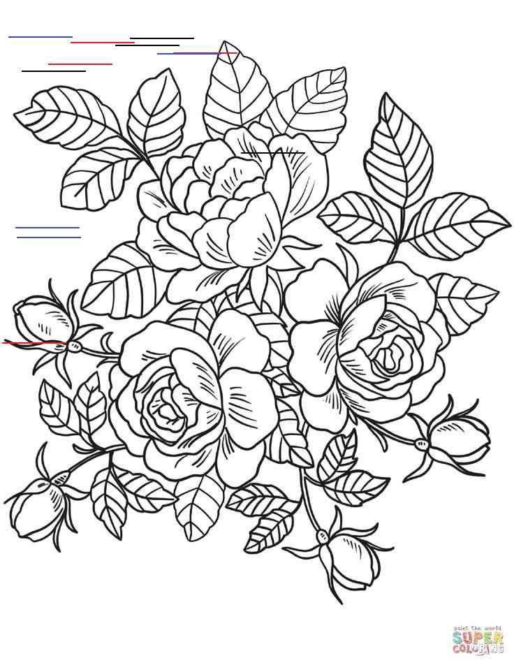 Malvorlagen Rosen Blumen Ausmalbilder Kostenlose Druckbare Malvorlagen Blumen B In 2020 Rose Coloring Pages Detailed Coloring Pages Printable Flower Coloring Pages