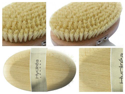 Wooden-Body-Brush-Dry-Wet-Cactus-Cellulite-Bristle-Bath-Shower-Dead-Skin-Hydra