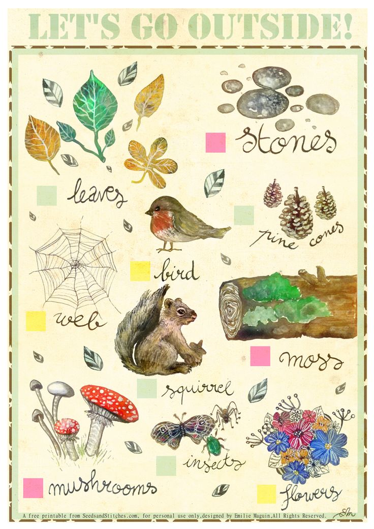 Nature Bingo for Young Children by Emilie Maguin for Seeds and Stitches.