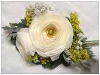BR-17. Twi ranunculus and ornamental flowers