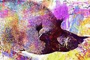 "New artwork for sale! - "" Pot Bellied Pig Pig Dozing Thick  by PixBreak Art "" - http://ift.tt/2txpuwv"