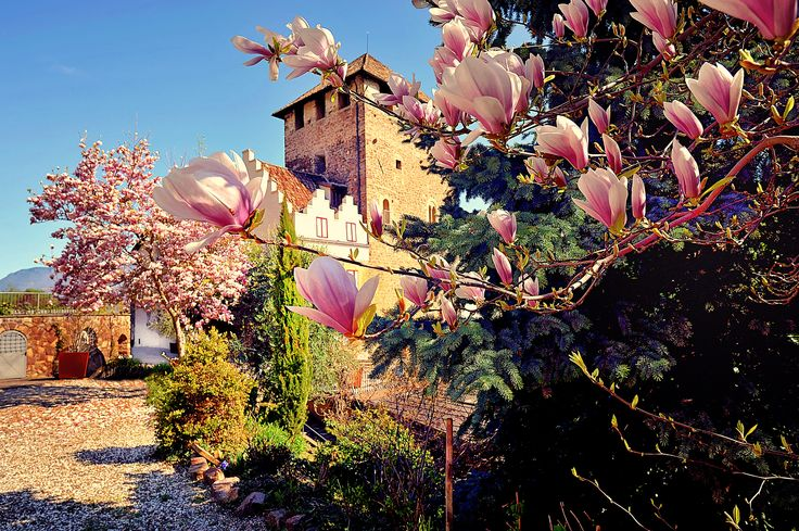 Spring at Schloss Korb in South Tyrol, Italy.