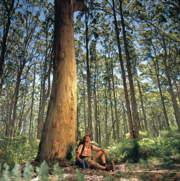 Leewin Naturaliste National Park, Tourism Western Australia