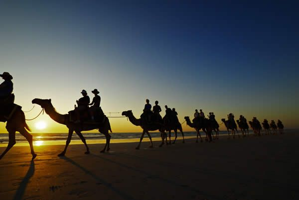 Camel trek across Cable Beach in Broome // Wild Western Australia: how to explore from Perth to Broome (Annie) www.travelnation.co.uk/blog/wild-western-australia-how-to-explore-from-perth-to-broome