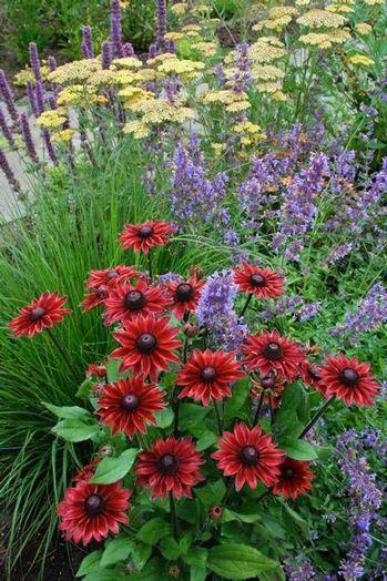 17 best images about prairie garden on pinterest gardens. Black Bedroom Furniture Sets. Home Design Ideas