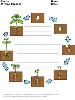 Plants: Here are 25 fun writing pages for your plants thematic unit!