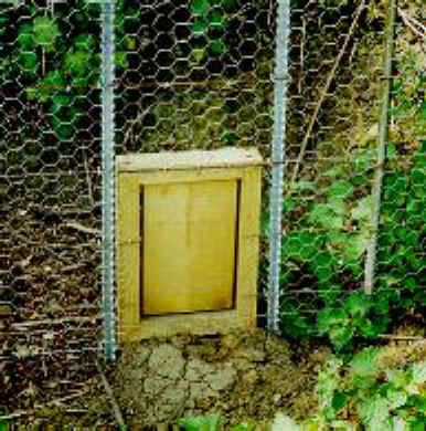 Photograph of a Badger Gate a passageway for mainly badgers to navigate Badgerland.co.uk