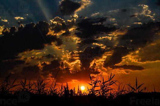 Sunset. #sunset #nature #sky #evening #photo #freelancediscount