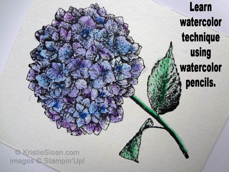 Watercolor Pencil Technique with Blender Pen