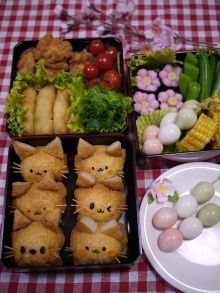 Flower viewing cats bento