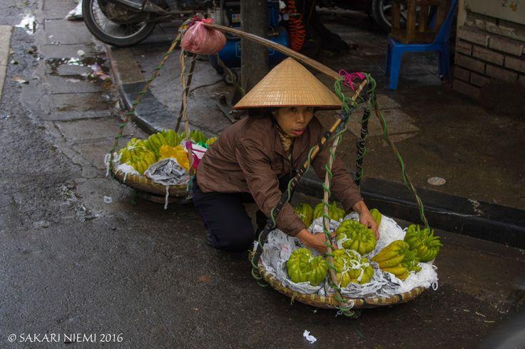 VN_160129 Vietnam_0064 Hedelmänmyyjä Hanoin vanhassa kaupungissa