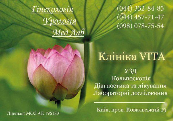 Клиника Vita. Гинекология в Киеве.