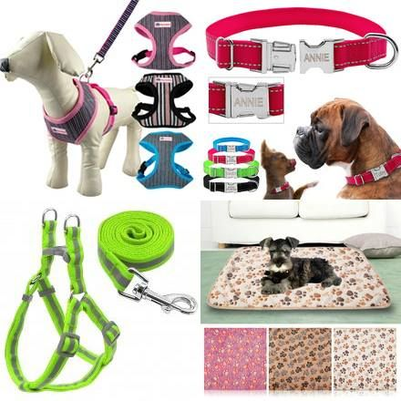 You can #Buy_Dog_Accessories_Online by paying reasonable rates. We offer a variety of pet accessories with various discount offers. Dog accessories such as collar set, belts and dog houses are easily available online.