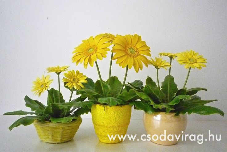 Gerbera (Gerbera) - My clay flower https://www.facebook.com/Csodavirag