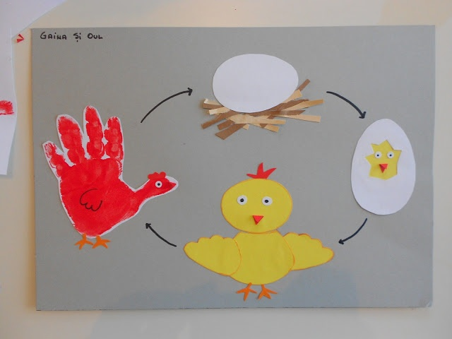 Chicken Life Cycle Craft for Kids