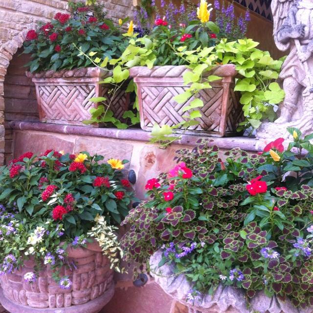 Beautiful patio ideas yard plant ideas pinterest for Lanai garden designs