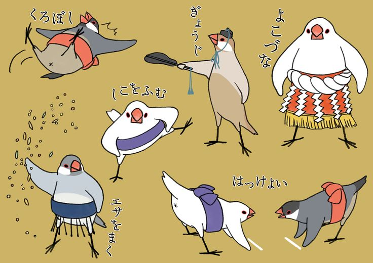 flatmountain Tumblr — tsujisaoricp: 文鳥すもう部屋