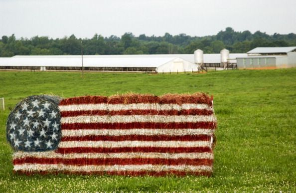 Stock photo of a US flag made from hay bales in front of a turkey farm near Rock Hill SC USA