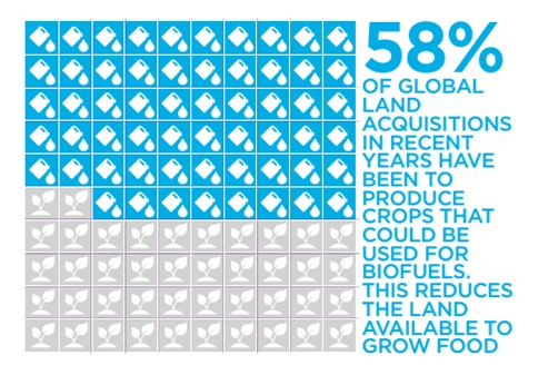 58% of Global land acquisitions in recent years have been to produce crops that could be used for biofuels. This reduces the land available to grow food.