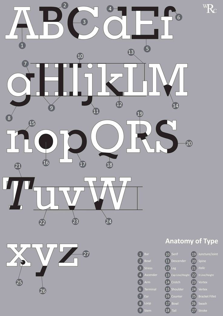 11 best images about typeface anatomy posters on pinterest fonts typography and type anatomy