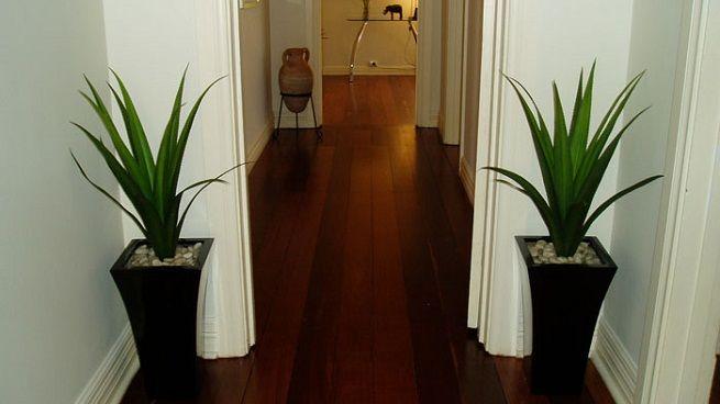 ¿Tenes un pasillo vació y frío? Ésta es la mejor idea para decorar y dar un tach de calidez. Plantas verdes y artificiales.