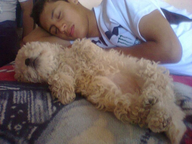 mi sobrino con su mascota oh lindos