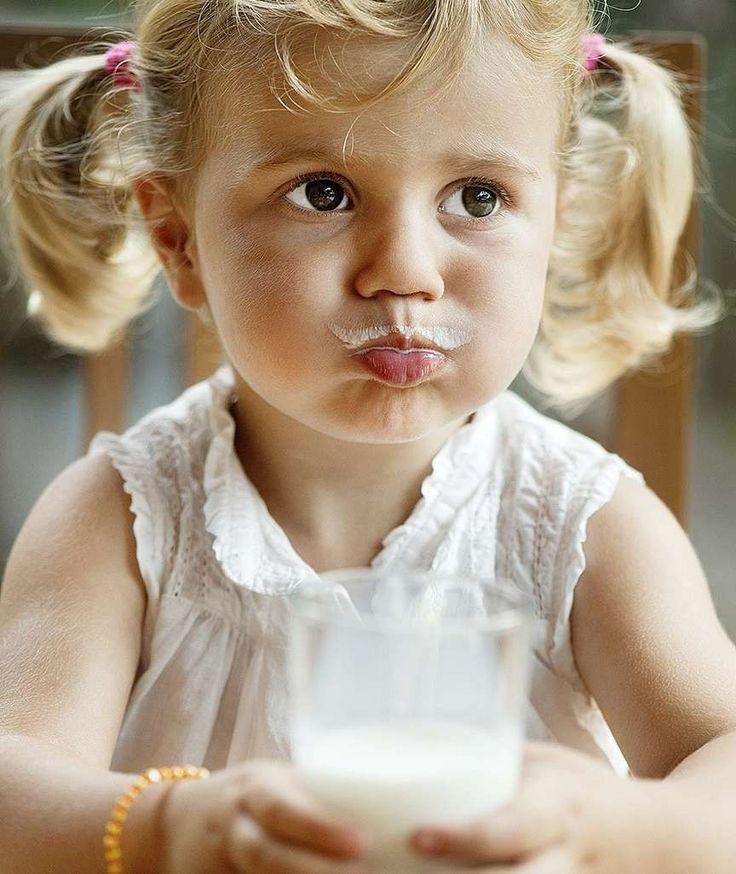 GESUNDE ERNÄHRUNG Wie viel Milch MUUHS sein? BILD sagt, was in Kuhmilch steckt und wie viel wir wirklich trinken sollten