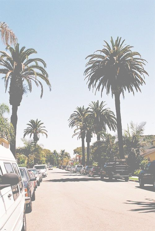 Los Angeles, California I would just like to see some palm trees please :) #AIRBNB