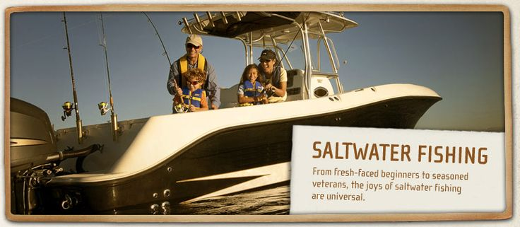 Best 25 saltwater fishing ideas on pinterest tie for Take me fishing