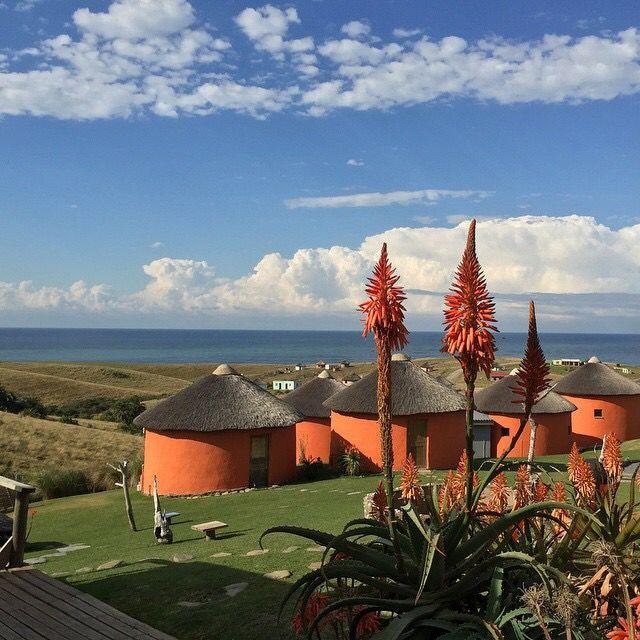 Swell Eco Lodge Accommodation South Africa Travel, Transkei, Wild Coast, Aloes