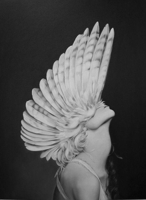 Ascending Athena by Amy Judd Art. S)
