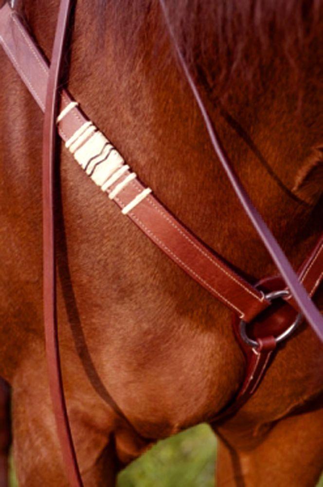 WESTERN Vorderzeug mit Rohhautverzierung HELLBRAUN o. RÖTLICH BRAUN Pony VB WB in Sport, Reit- & Fahrsport, Westernreiten | eBay