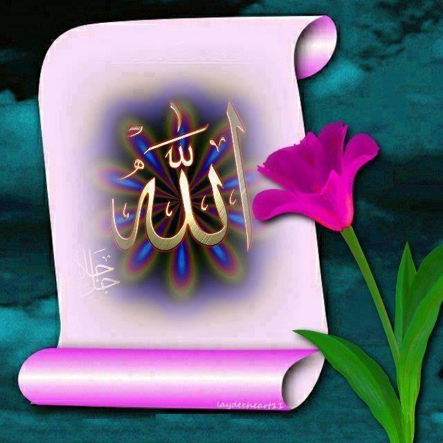 slamic photo gallery free download https://islamtheonlytruereligion.wordpress.com/world-library/hindi-library/islamic-hindi-books/