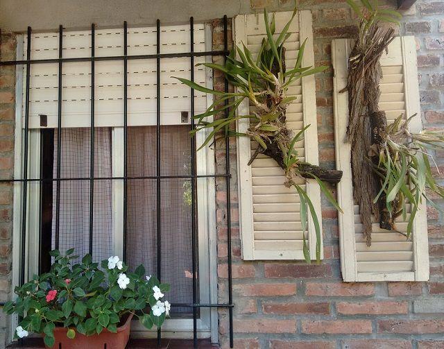 Persianas reutilizadas en soporte de orquídeas en el frente de una casa, ¡muy lindas!