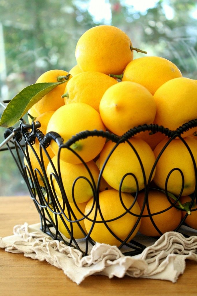 I love lemons piled in a wire basket-they get air circulation and inspire you to make all kinds of lovely things!