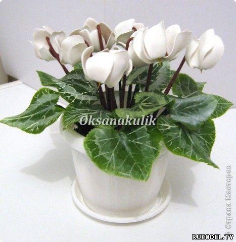 Master Class Cyclamen bloem van polymeer klei. - Bloemen van polymeer klei - Polymer Clay - Publisher - Rukodel.TV